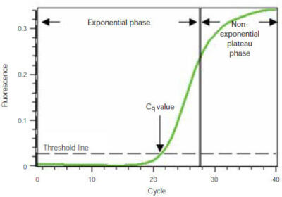 Real time pcr amplification plot qpcr real time pcr
